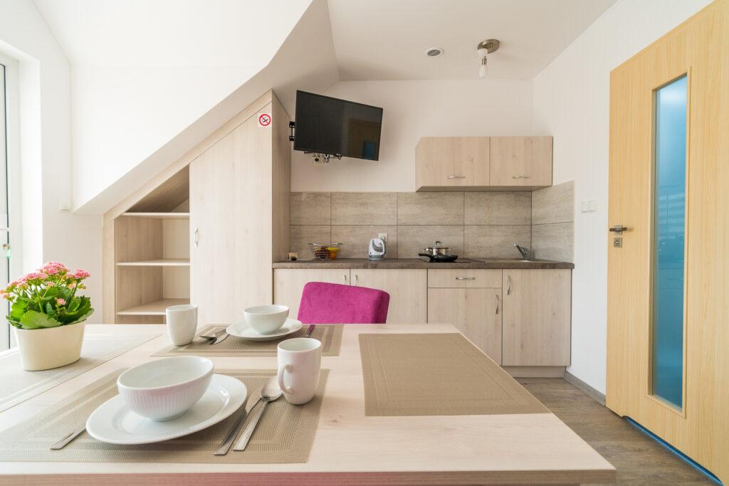 apartament z wlasnym wejsciem kuchnia z telewizorem